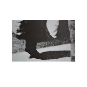 poland1-7-copy